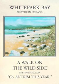 Whitepark Bay, County Antrim, Northern Ireland. Painting and travel poster by Stephen McClean